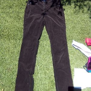 Ann Taylor brown courdy pant🌟🌟
